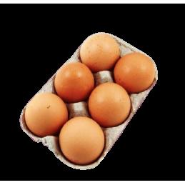 Oeufs Pack de 6 Pièces
