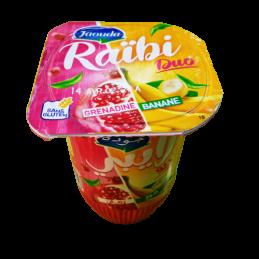 Raibi Duo Lait Fermenté...